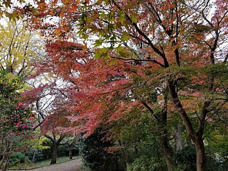 2018.12源氏山公園の源頼朝像.jpg