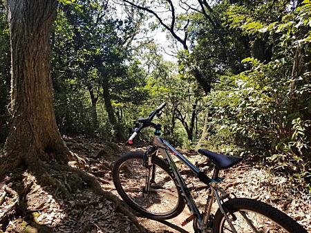 2019.9.2BOSSリハビリ鎌倉マウンテンバイク1.jpg