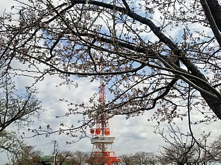 2021.3.21湘南平テレビ塔.jpg