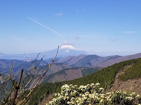 2021.4.12 BOSS丹沢登山 富士山2.jpg