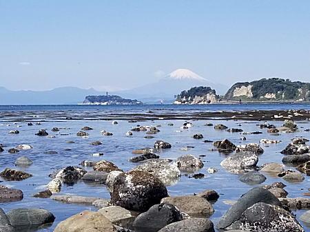2021.4.26材木座海岸 和賀江島.jpg