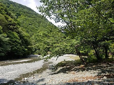 2021.6.21BOSS丹沢湖河川清流_4.jpg